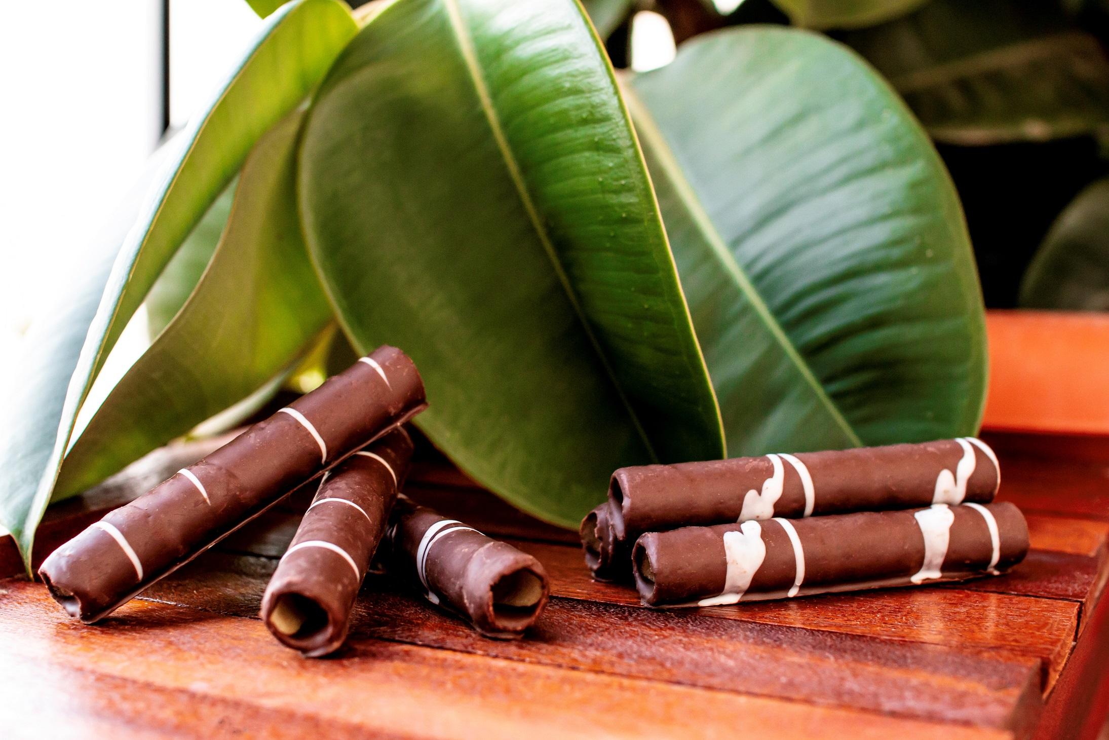 Barquillos Artesanos al Cacao