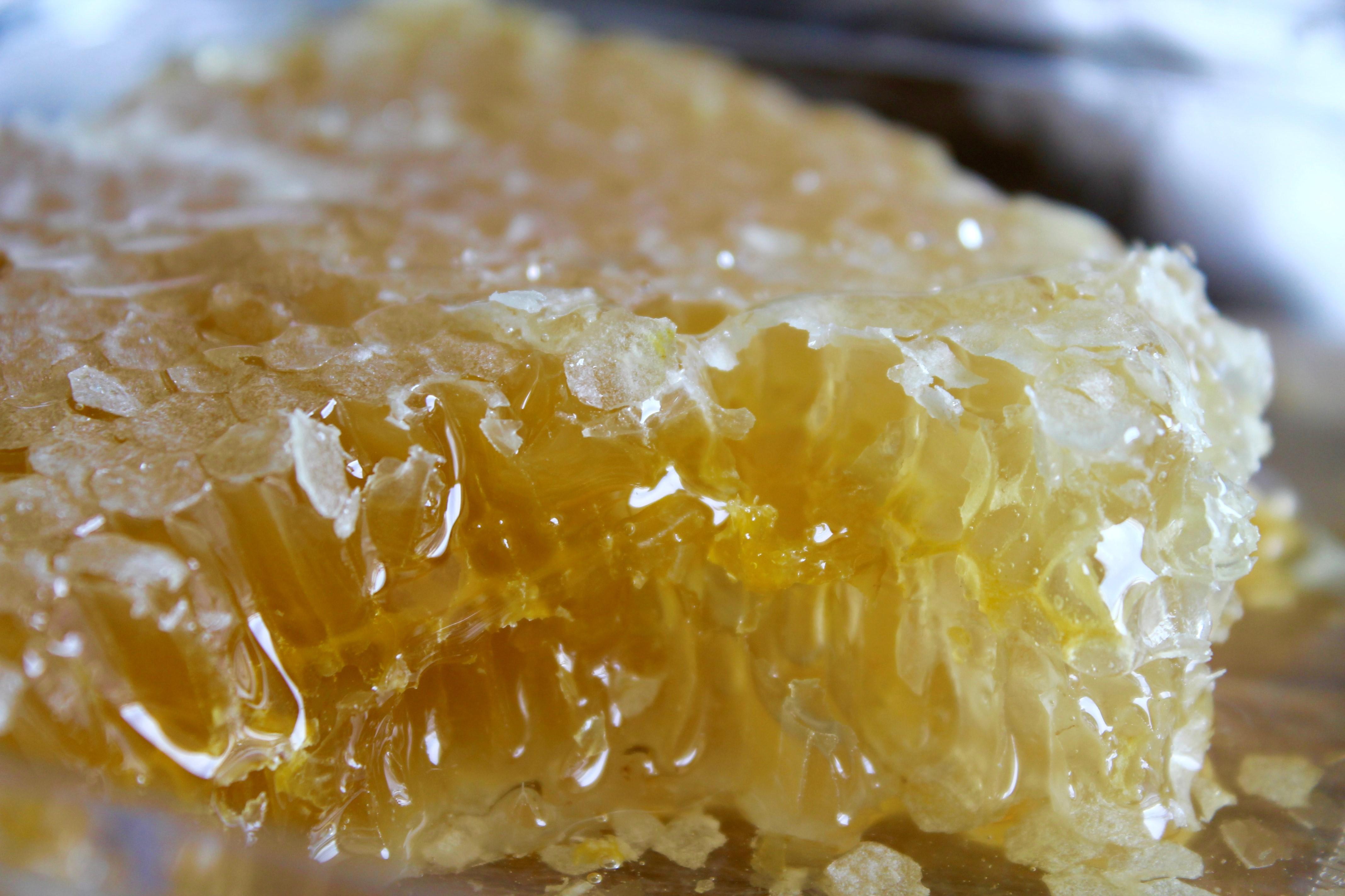 Panal de miel. Turrón Picó